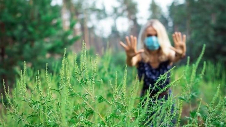 Жителі Полтавщини вирішили боротися з амброзією через «Екологічні ініціативи»