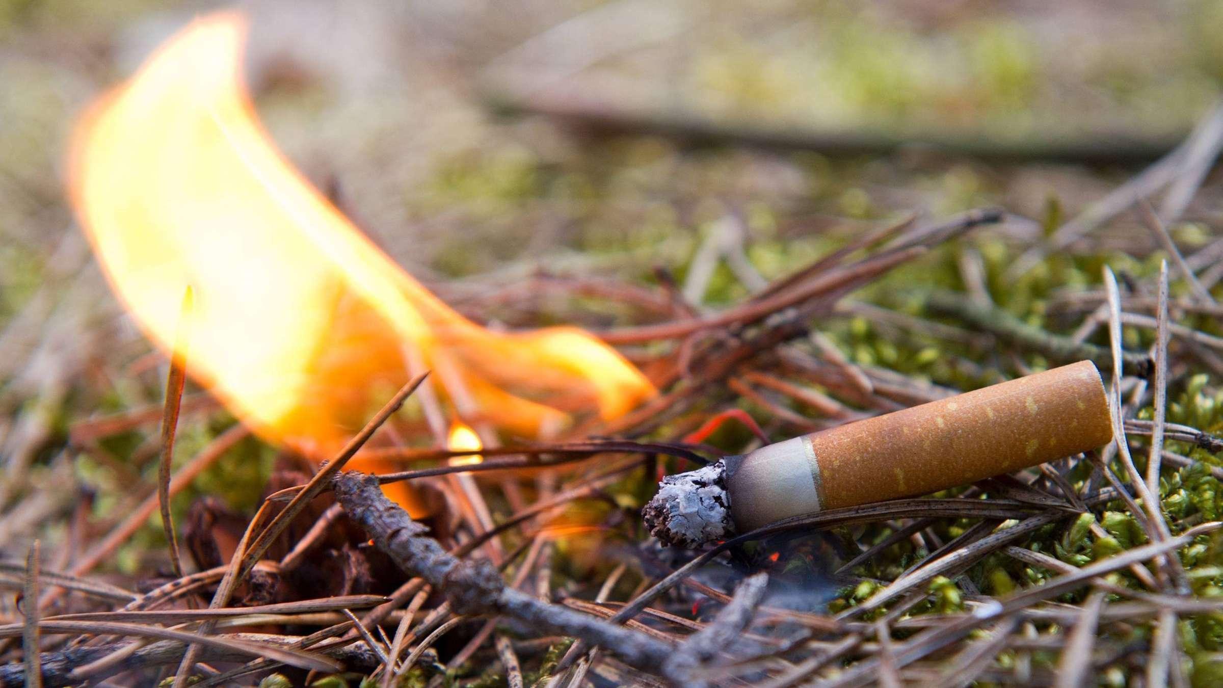 Полтавців попереджають про надзвичайну пожежну небезпеку