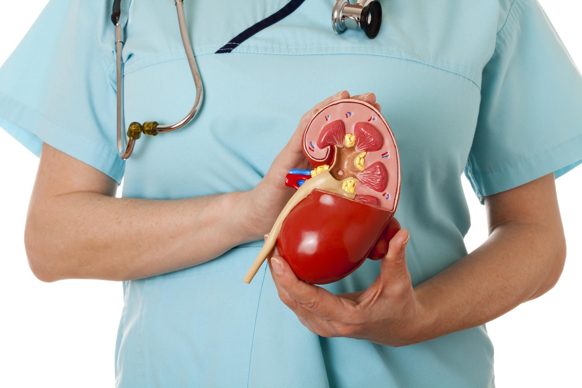У 1-ій міській лікарні Полтави робитимуть операції з трансплантації нирок. Проєкт пілотний