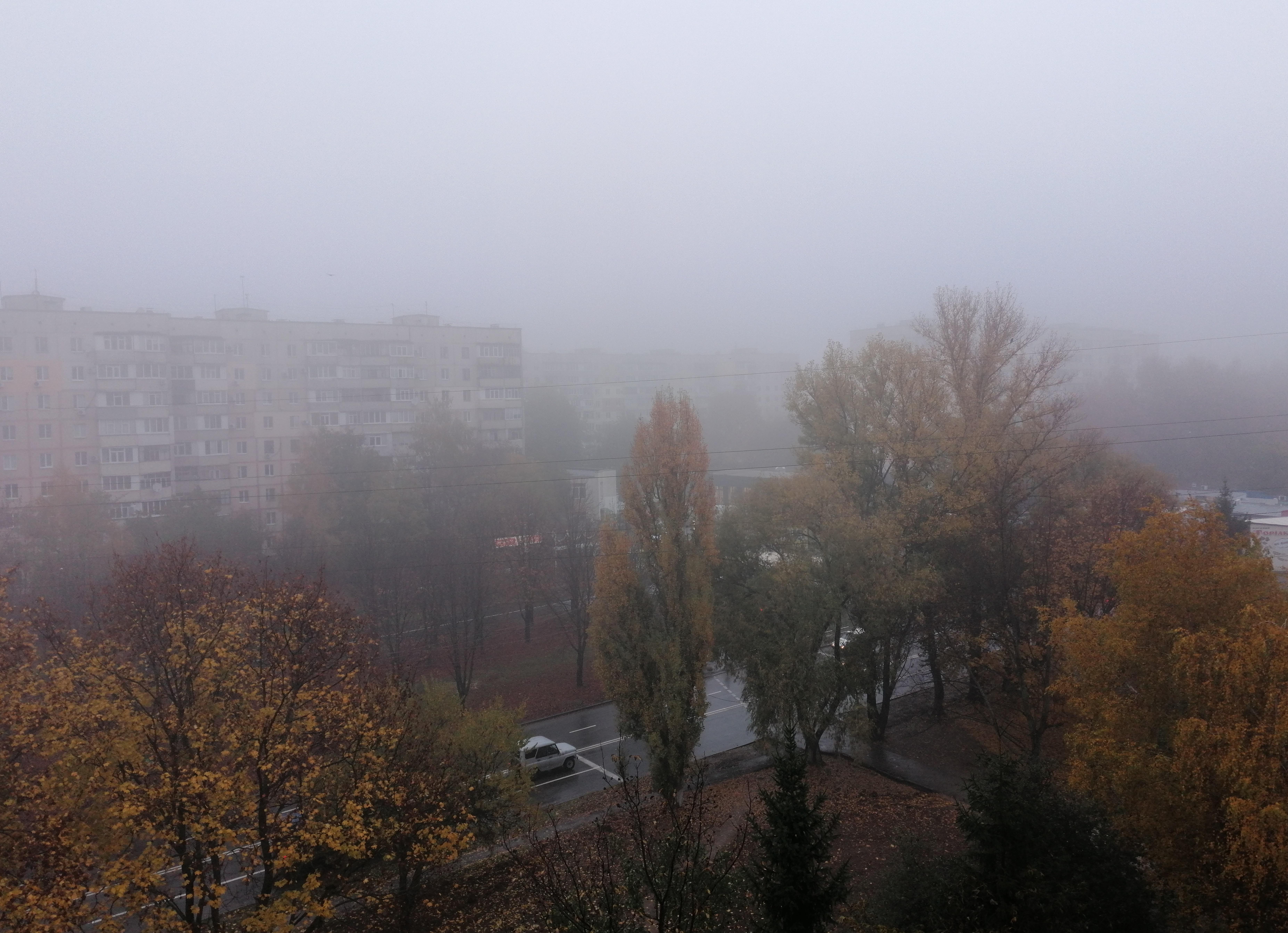 На Полтавщине из-за тумана объявлено штормовое предупреждение