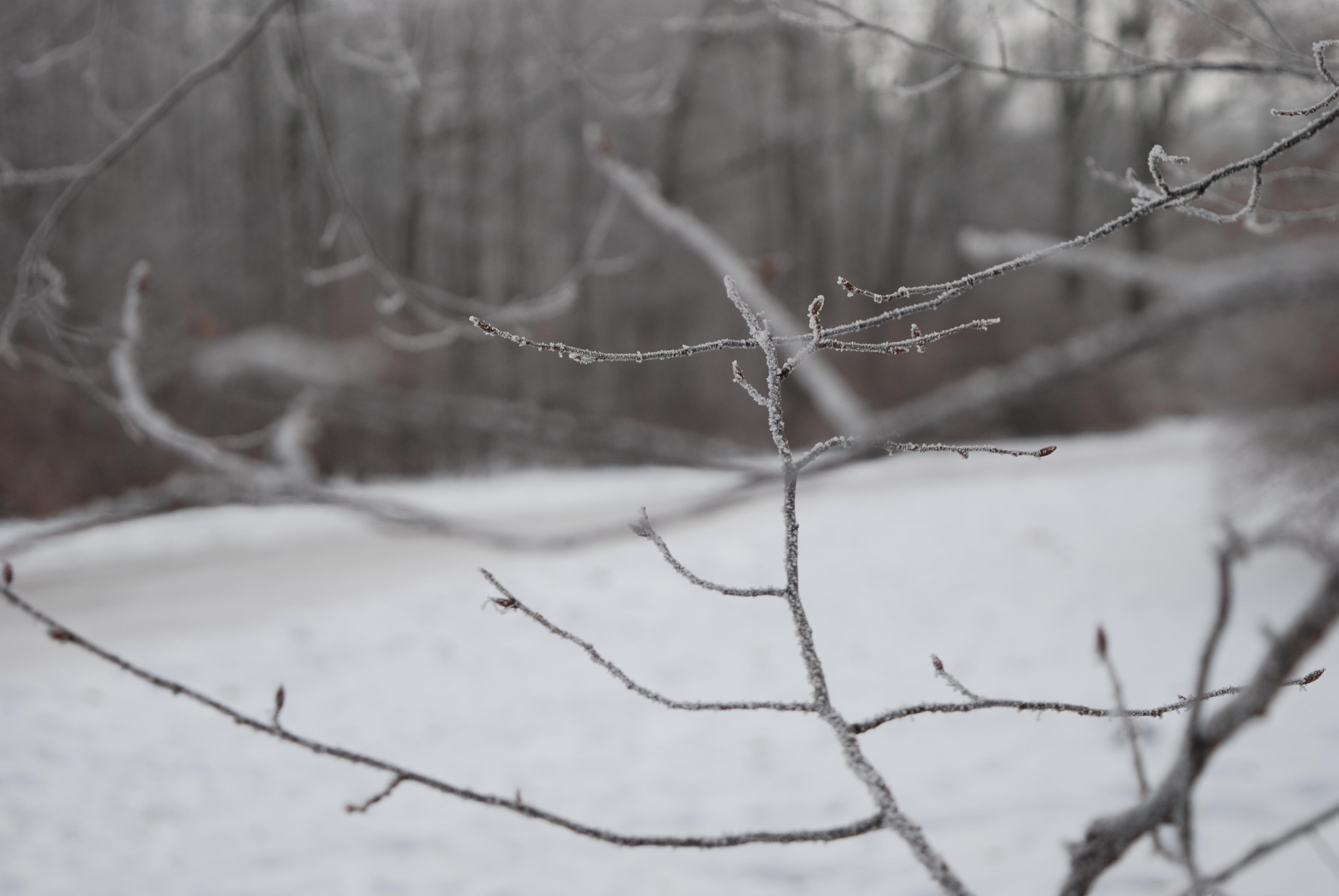 Метеорологи попередили, що на Маланку Полтаву заноситиме снігом