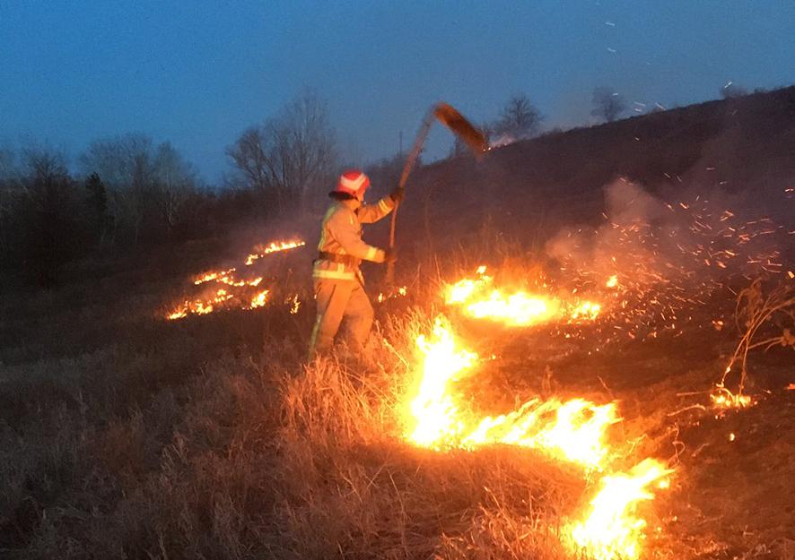Причина 90% пожеж в екосистемах – необережне поводження полтавців із вогнем